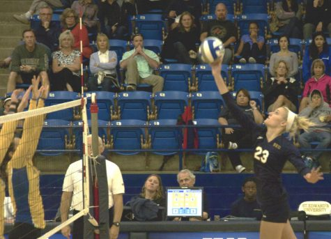 Volleyball player receives All-American honors