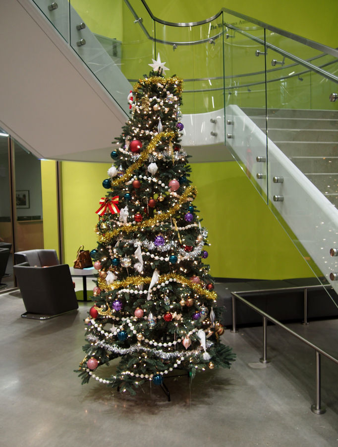 Christmas trees have been popping up all around campus as the holidays approach.