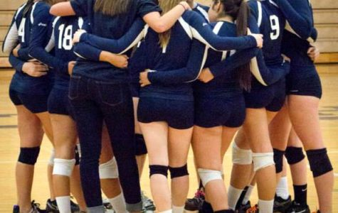 Increase of volleyball players  leads to more opportunities