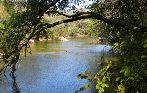 Backyard getaway: Austin provides for hikers, swimmers