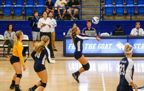 St. Edward's hires new head volleyball coach